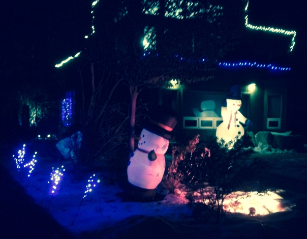 Here is the side of their house - they love snowmen!