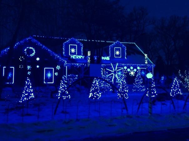 """Elvis is singing """"Blue Christmas""""...appropriate.."""