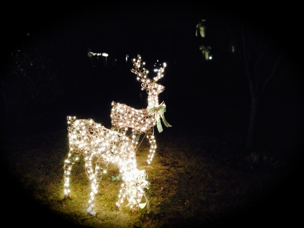 ...and lit up reindeer.
