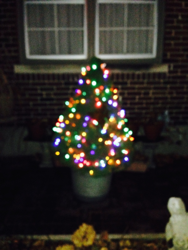 ...and a colorful lit up Christmas Tree
