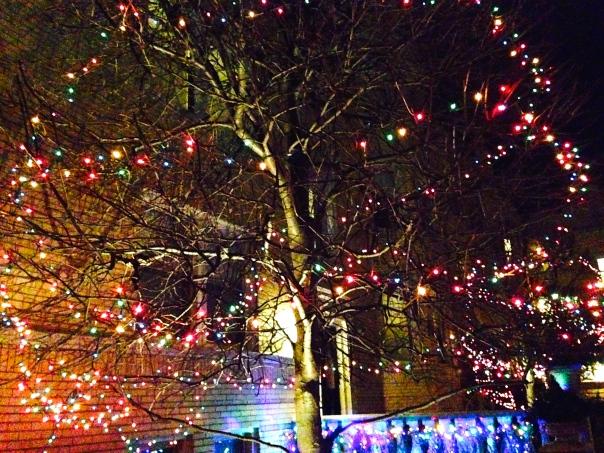 ...and big tree of cheerful lights